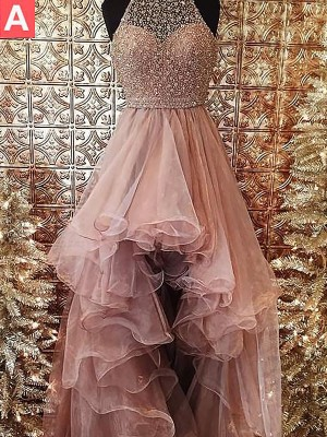 Ball Gown Halter Asymmetrical Sleeveless Beading Tulle Dresses